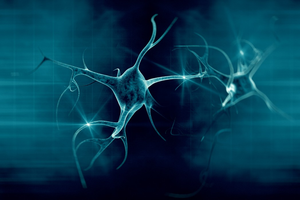 Neuralstem Wins Patent Infringment Case on Stem Cell Technology