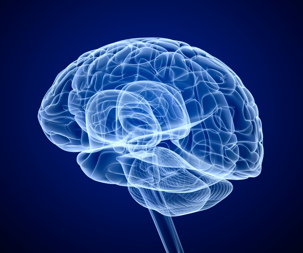 Results on Ibudilast Clinical Trial To Be Presented At 2015 International Symposium on ALS/MND