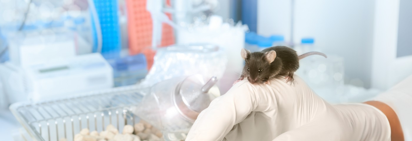First Transgenic Mouse Model of Familial ALS Created in Lab