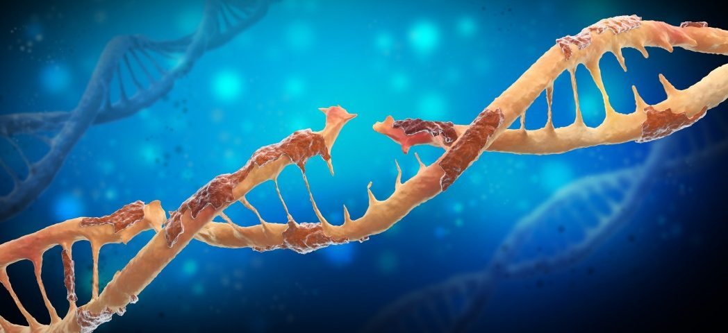 Familial ALS Mutation Seen to Turn Protein That Binds to RNA Toxic, Ultimately Killing Motor Neurons