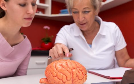 Scientists Find Stem Cells in Brain's Meninges, Possibly Leading to Future ALS Therapies