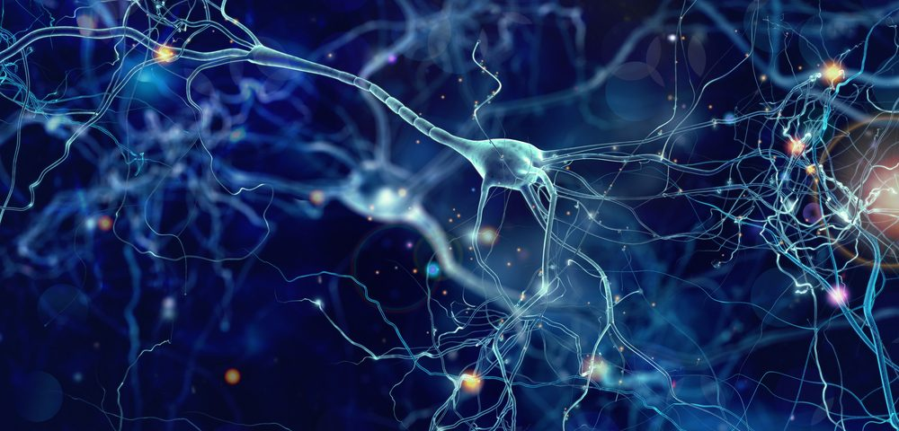 Stabilizing Motor Neuron Survival Protein Might Lead to New ALS Treatments, Harvard Researchers Find