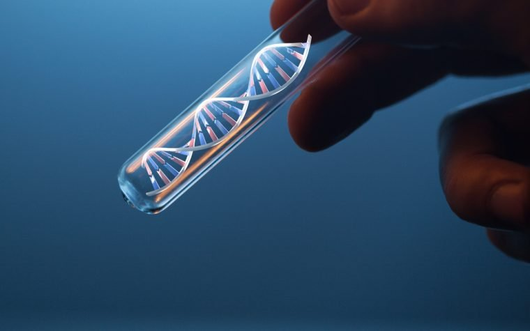DNA Damage and Other Pathologies Absent in a Mouse Model of Familial ALS, German Study Shows