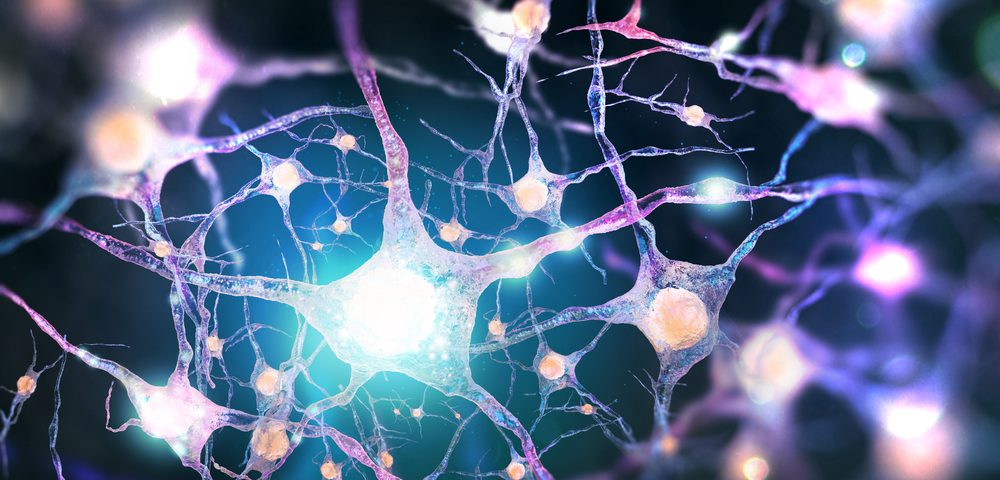 ALS Mutation Kills Nerve Cells by Preventing Protein Clumps from Breaking Apart, Study Reports