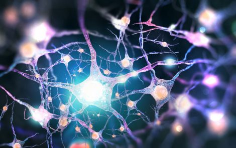 Neuronal Pathway Linked to ALS, Other Neurodegenerative Diseases, Study Suggests