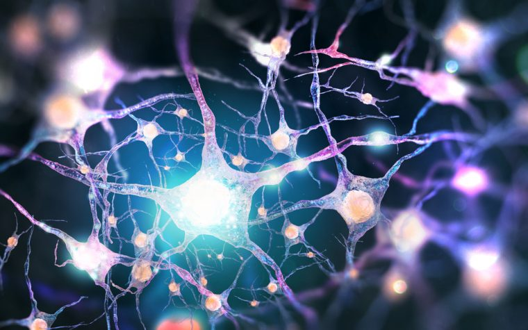 neuronal pathway linked ALS