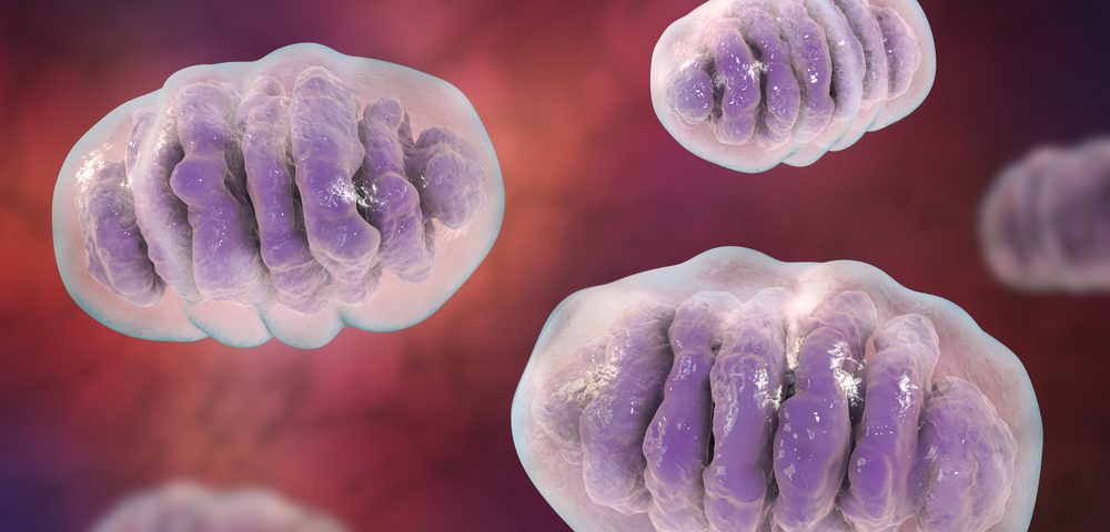 British Mitochondria Study Could Provide New Approaches to Treating ALS