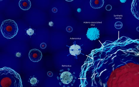 Voyager Presents New Data in AAV Gene Therapy for ALS at European Conference