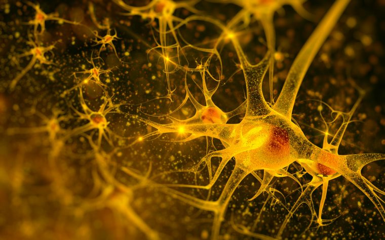 Stem Cell Treatment Targeting Spinal Cord Won't Slow ALS, Researchers Say